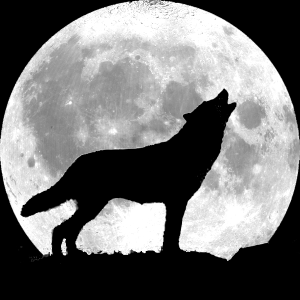 wolf-howling-full-moon